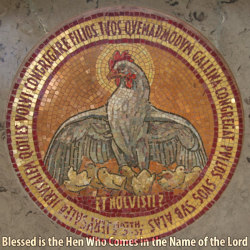 Blessed is the Hen Who Comes in the Name of the Lord