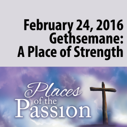 Gethsemane: A Place of Strength