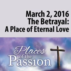 The Betrayal: A Place of Eternal Love