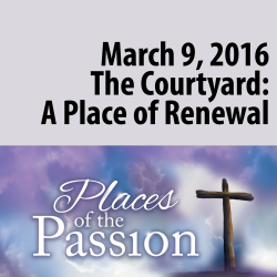 The Courtyard: A Place of Renewal